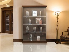 Waddell Vantage Display Case
